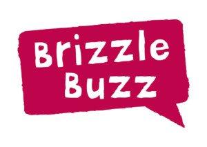 Brizzel SEO Company CoolBison